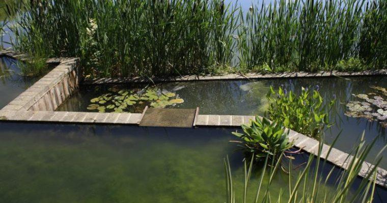 [Bambois] Le lac de Bambois (Galerie)