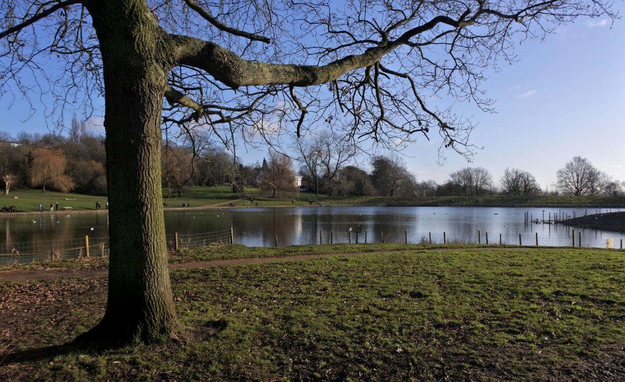 Hampstead, pond
