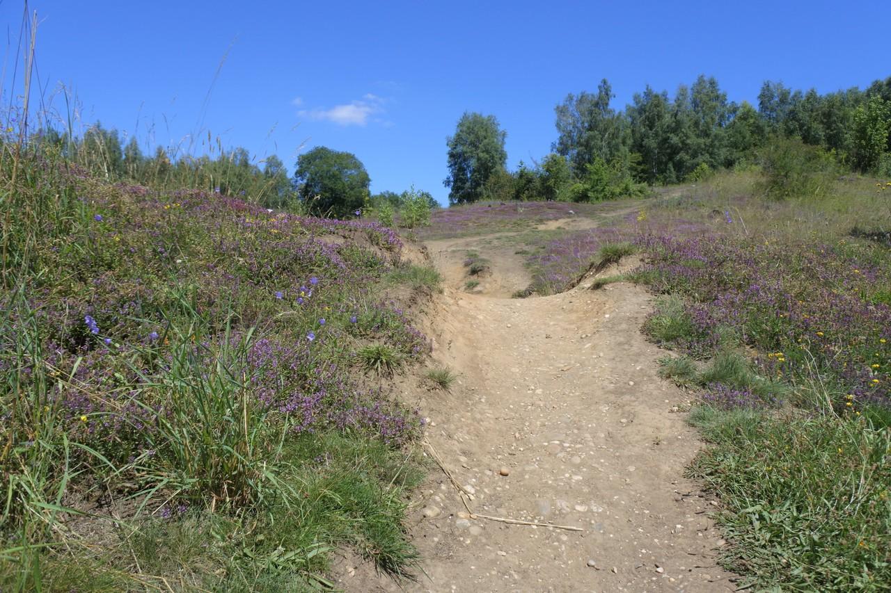 visite réserve naturelle Sclaigneaux